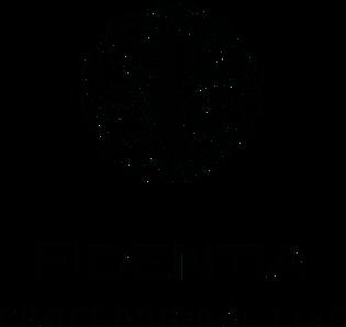 logo-schwarz-kleiner